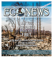 EcoNews - cover - Dec2017Jan2018